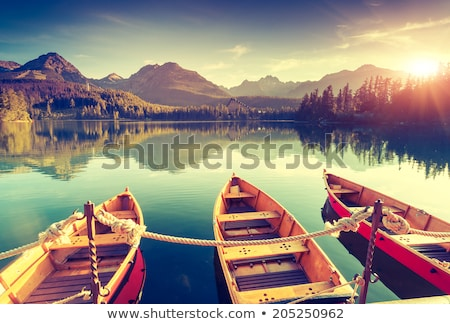 Beautiful view of the Slovakia mountains. Stock photo © master1305