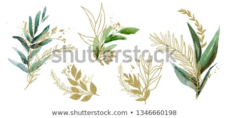 summer watercolor background with green grass and ferns stock photo © gladiolus