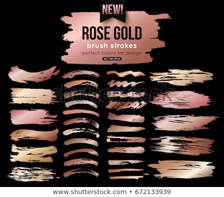 set of roses banner stock photo © elak