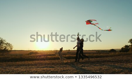 Girl with dog and kite stock photo © nizhava1956