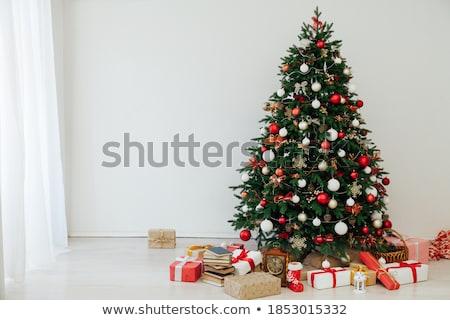 tenha · isolado · branco · textura · árvore - foto stock © GeniusKp