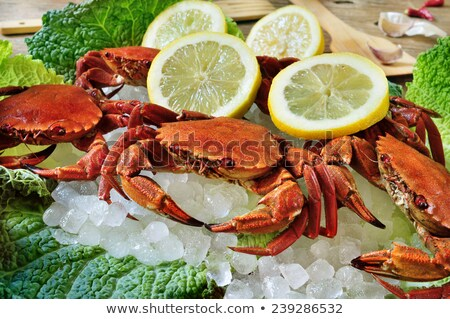 raw velvet crabs on crushed ice Stock photo © nito
