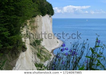 Krijt kust zee deur schoonheid Stockfoto © vwalakte