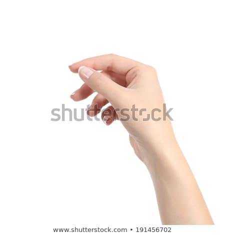 手 ブランクカード 孤立した 白 紙 ストックフォト © cherezoff