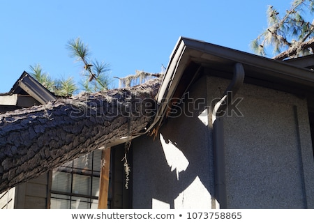 hurricane destroyed roof of house property insurance stock photo © orensila