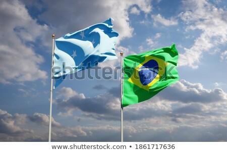 Brasil Micronésia bandeiras quebra-cabeça isolado branco Foto stock © Istanbul2009