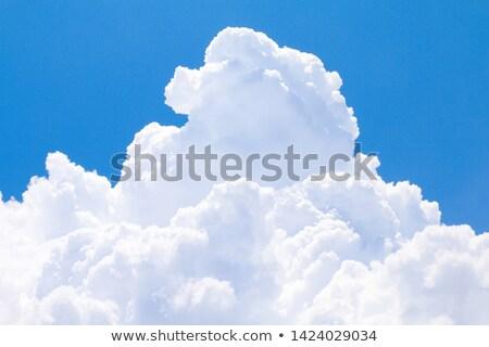 Fofo grande nuvem branco cinza azul Foto stock © zhekos