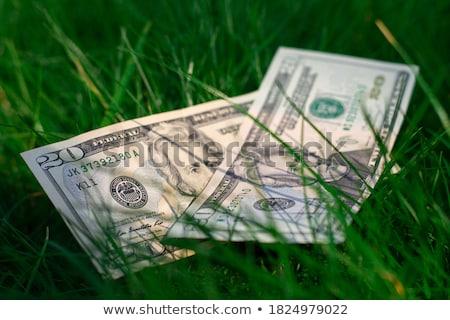 двадцать долларов американский свет бизнеса наличных Сток-фото © mayboro1964