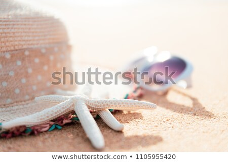 vintage book and sea shells on sandy beach stock photo © stevanovicigor