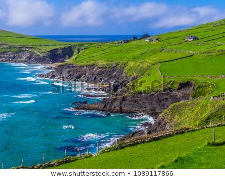 rocky stone beach on the wild atlantic way Stock photo © morrbyte