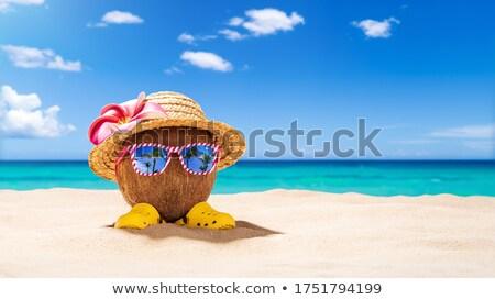 słomkowy · kapelusz · książki · piasku · piasek · na · plaży · morza · strona - zdjęcia stock © zerbor