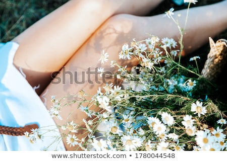 legs on blooming meadow stock photo © simply