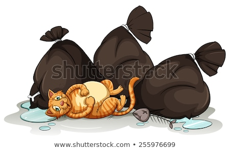 A cat beside the trashbags Stock photo © bluering