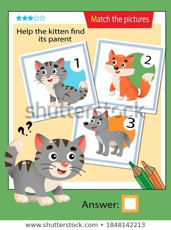 Dopasowywanie gry szablon kot ilustracja szkoły Zdjęcia stock © bluering