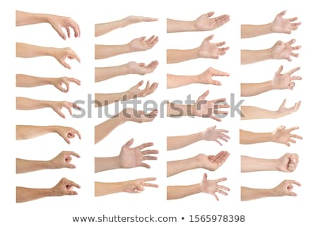 human hands isolated Stock photo © leedsn