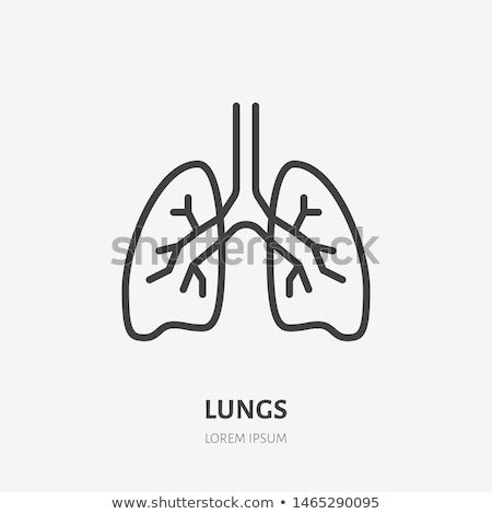 Human lungs icon Stock photo © BoogieMan