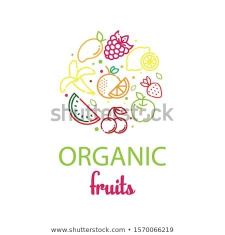 orgânico · frutas · vegan · comida · ilustração · vegetariano - foto stock © bluering