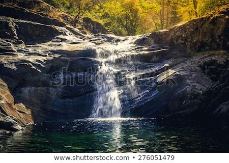 Görmek vadi sekoya park nehir Stok fotoğraf © meinzahn