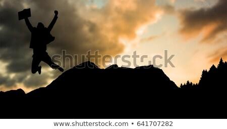 силуэта бизнесмен прыжки горные закат цифровой композитный Сток-фото © wavebreak_media