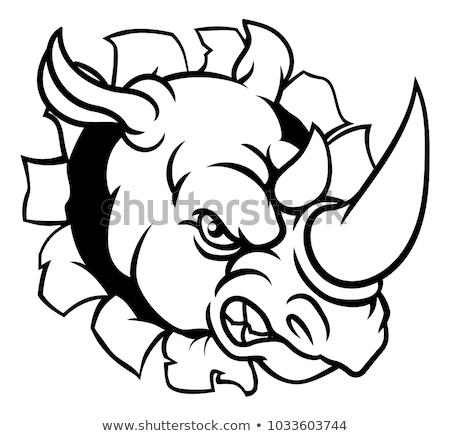 Rinoceronte zangado esportes mascote rinoceronte animal Foto stock © Krisdog