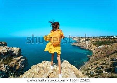 Full length portrait of a delighted girl in dress stock photo © deandrobot