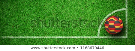 Football in german colours against close up view of astro turf Stock photo © wavebreak_media