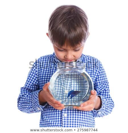 Foto stock: Caucasiano · menino · aquário · peixe-dourado