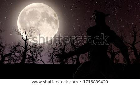 Werewolf Wolfman Halloween Silhouette Stock photo © Krisdog