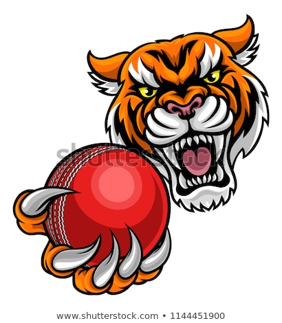 tiger holding cricket ball mascot stock photo © krisdog