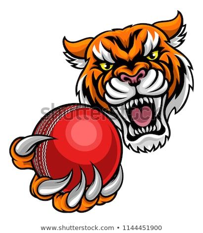 тигр крикет мяча талисман сердиться Сток-фото © Krisdog