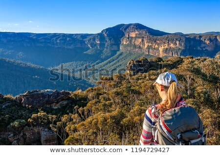 Scenic views to Mount Banks Blue Mountains Australia Stock photo © lovleah