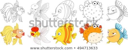 piranha · vágási · körvonal · hal · vízalatti · állat · rajz - stock fotó © colematt