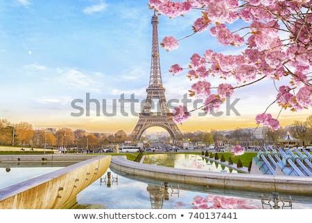 Eyfel Kulesi şafak Paris Fransa gökyüzü inşaat Stok fotoğraf © Givaga