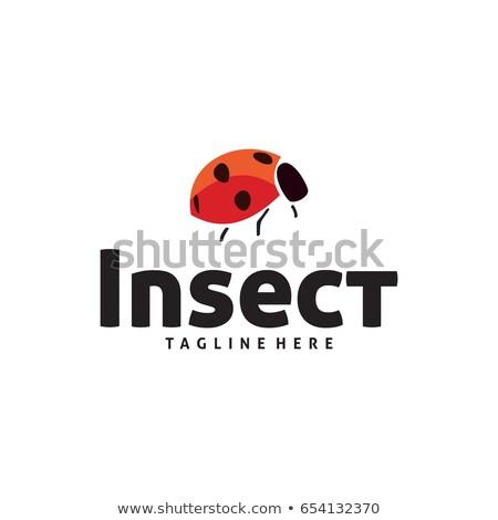 grasshopper logo icon vector element symbol Stock photo © blaskorizov
