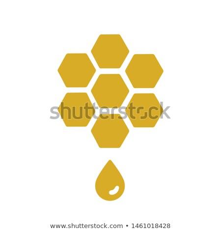 olie · drop · logo · geïsoleerd · witte · realistisch - stockfoto © blaskorizov
