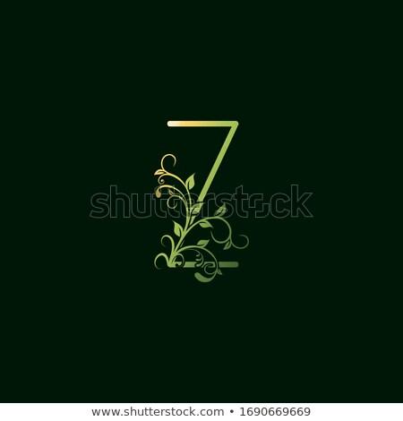 letter z green leaf icon logo vector symbol stock photo © blaskorizov