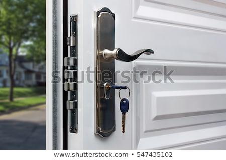View at metallic locked door Stock photo © boggy