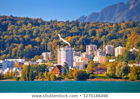 Lake Luzern idyllic coastline and green nature stock photo © xbrchx