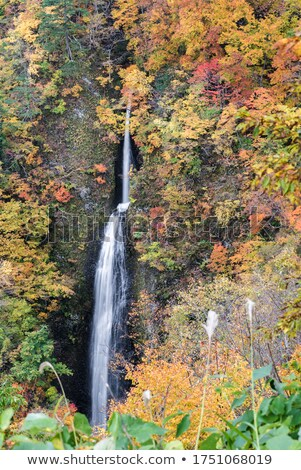 Tsumijikura Taki waterfall Fukushima Stock photo © vichie81