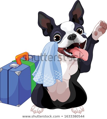 Stock photo: Boston Terrier With A Suitcase