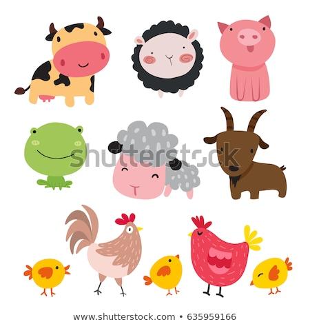 куриные курица характер Cartoon иллюстрация Сток-фото © izakowski