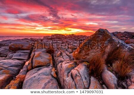 Rijke Rood zonsopgang kust Australië oranje Stockfoto © lovleah