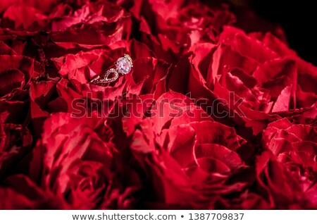 Dream from jewelry red roses Stock photo © blackmoon979