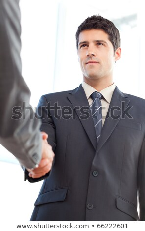 Below view of a serious businessman concluding a deal with a partner at the office Stock photo © wavebreak_media