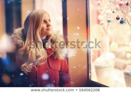 Stock fotó: Gyönyörű · mikulás · karácsony · lány · bevásárlókocsi · kicsi