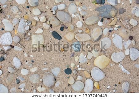Beach stone Stock photo © ottoduplessis