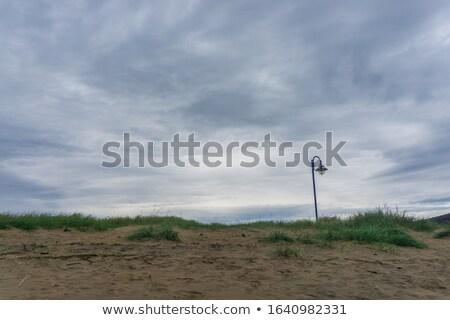 Grama areia Quebec Canadá natureza fundos Foto stock © bmonteny