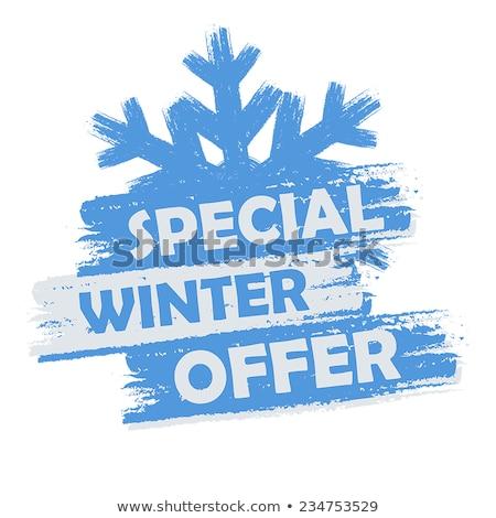Stockfoto: Speciaal · winter · bieden · banner · tekst · Blauw