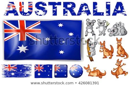 Voetbal cartoon australisch vlag voetbal sport Stockfoto © doomko