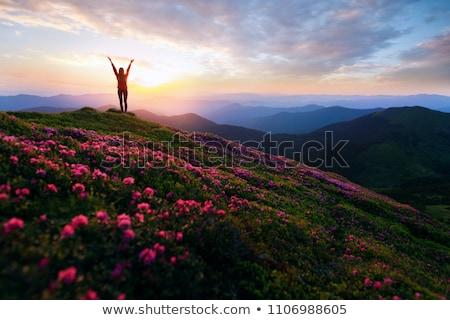 boldog · nő · kirándulás · napos · hegyek · természetjáró - stock fotó © lichtmeister